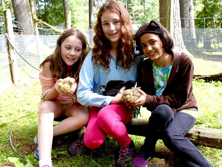 Three girls holding a bird and baby bird